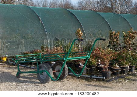 Wagon with plants in the commercial garden center