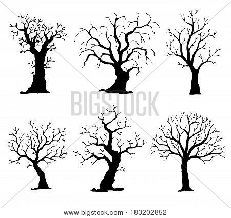 Collection of trees silhouettes. Vector tree isolated on white background.