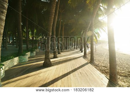 Morning tourist embankment with palm trees along the beach at Dadonghai Bay on Hainan Island, China
