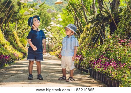 Two Boys, A Traveler In Vietnam Against The Backdrop Of Vietnamese Hats