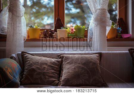 Furniture And Window
