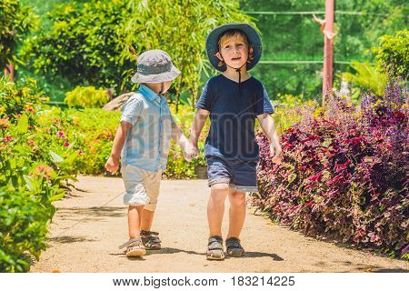 Two Happy Brothers Running Together On A Park Path In A Tropical Park