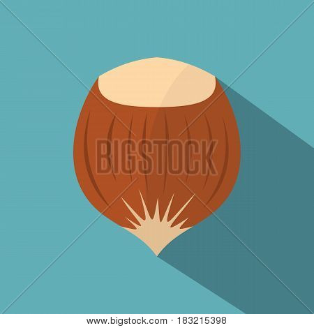 Hazelnut icon. Flat illustration of hazelnut vector icon for web on baby blue background