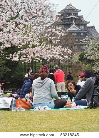 Korakuen Garden, Okayama, Japan - April 8, 2017 : Japanese enjoying Cherry blossoms festival in park. Hanami is Japanese tradition of welcoming spring.