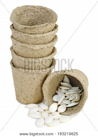a bunch of pitchers cups of peat for seedlings of plants inserted into one another and lie on the table pumpkin seeds and zucchini isolated on white background