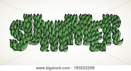 Hand-drawn word Summer formed with green leaves. Hand lettering vector typography isolated over white.