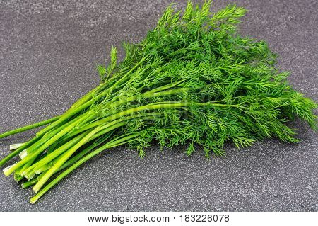 Bunch of fresh fragrant dill. Studio Photo