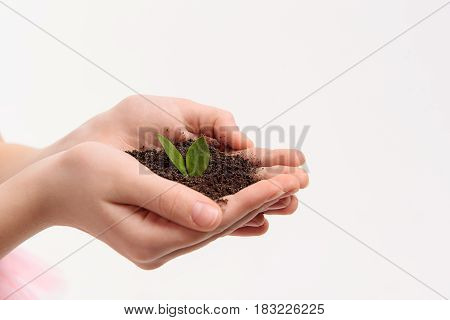 New life. Close up of female arms of little girl are holding handful of ground. Isolated. Copy space on right side
