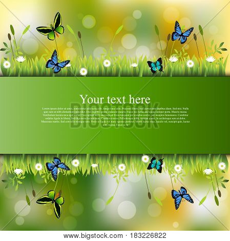 Very high quality original trendy banner with grass, flowers, chamomile and butterfly
