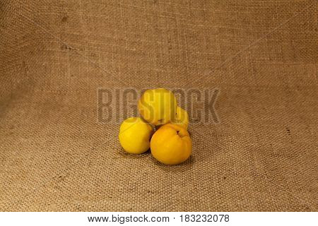 Ripe yellow quince japanese lie on the cloth.
