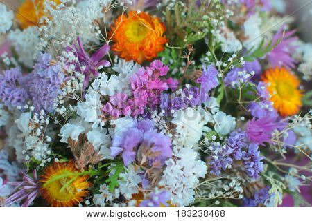 A bouquet of dried wildflowers. Close-up background. White, purple, red, yellow and red colors.