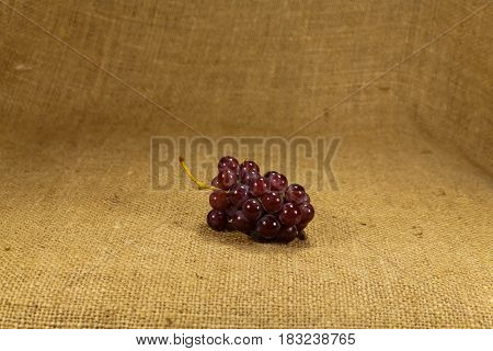 A bunch of ripe grapes lies on a cloth