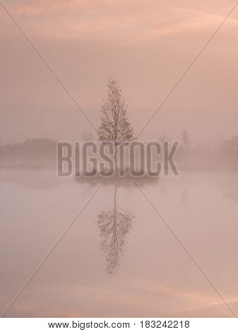 The  Island In Middle Of L Mountain Ake. Purple Morning With Peaceful Water Level