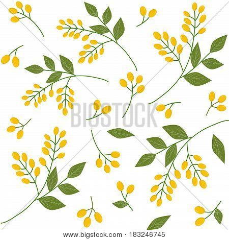 Seamless botanical pattern yellow seaberries green twigs leaves on white background