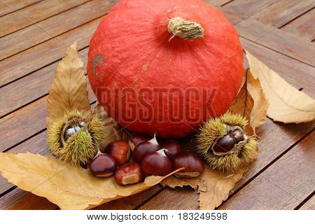 Chestnuts, husk, pumpkin and dead leaves on a wooden table