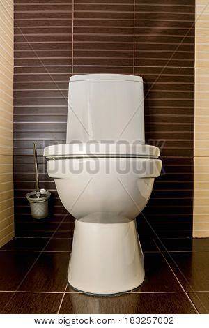 Vertical close-up of modern flush toilet bowl at WC