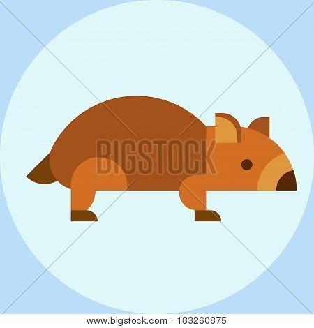 Wombat national park australia herbivore fauna furry outdoors tasmania wildlife australian marsupial vector illustration. Vombatus wild park ursinus aussie bear pet sweet baby character.