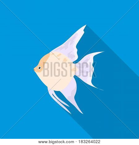 Angelfish common fish icon flat. Singe aquarium fish icon from the sea, ocean life flat.