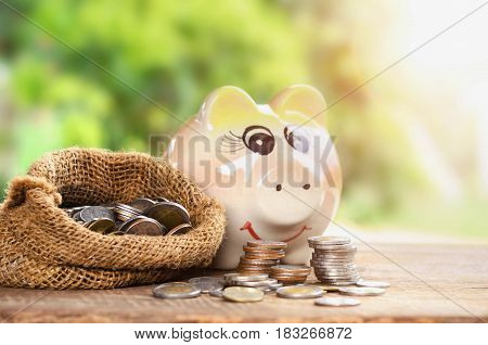Coins in sack and piggy bank for money saving financial concept