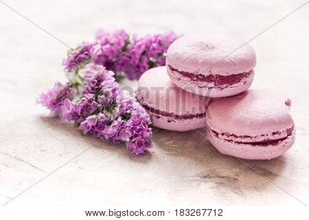 modern spring design in pastel color with macaroons and purple flowers on white background