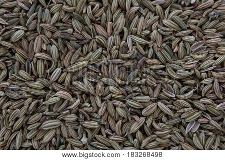 Whole Fennel Seeds Covering the Horizontal Image