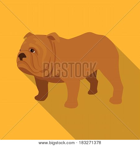 English bulldog icon in flat style isolated on white background. England country symbol vector illustration.