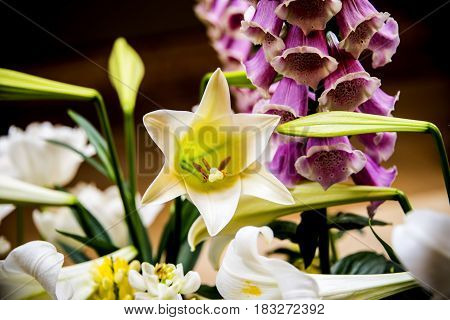 flowers, flowers concept, natural flowers, white flowers, flowers of the spring, yellow and viola flowers with blurry background, spring flower, flowers in the vase, different flowers,