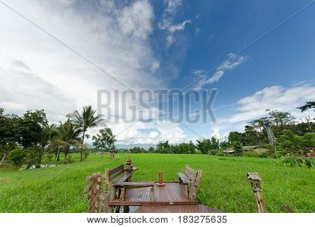 the beautifu  rice field from Chaingmai Thailand