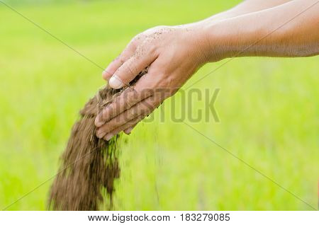 Plant organic compost fertilizer poring with farmer hand for planting over green background