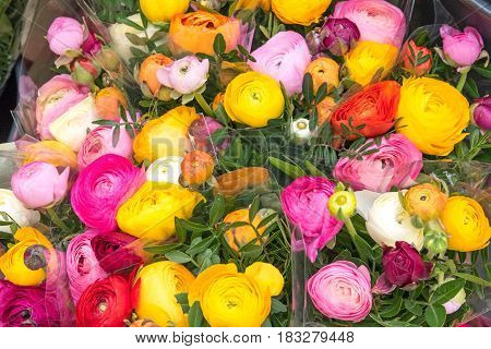 Colorful boquet of roses for sale at a market