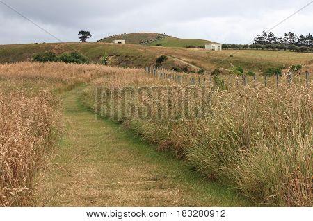 Kaikoura, Peninsula Walkway, New Zealand