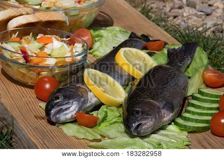 Fresh rainbow trout vegetable salad and toast on wooden bowl
