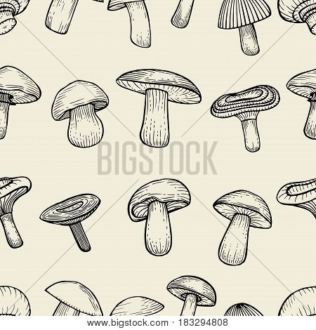 Hand drawn vector pattern. Seamless pattern with mushrooms. Creative black contour art work. Hand drawn illustration mushrooms. Nature seamless pattern