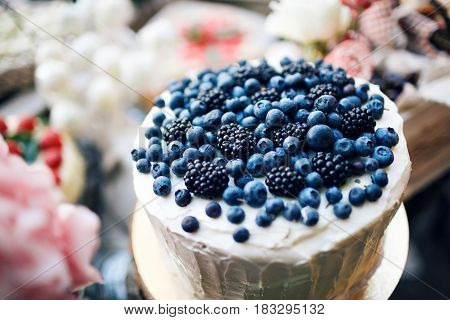 Cheesecake with fresh blueberries on wooden table, rustic style, place for your text up.