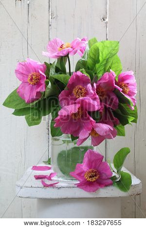 Forest peonies. Forest bouquet of pink peonies in a white ceramic vase