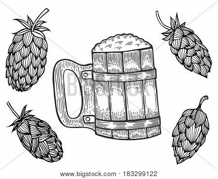 engraving beer mug and hops. Vector illustration, isolated on white