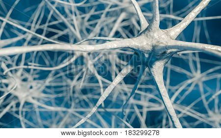 3D rendered illustration of neurons in brain.