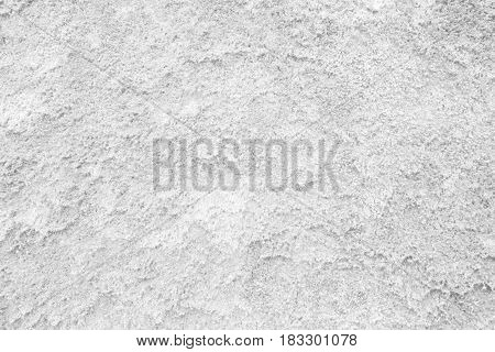 White Moss Wall Texture Background. Suitable for Presentation and Web Templates with Space for Text.