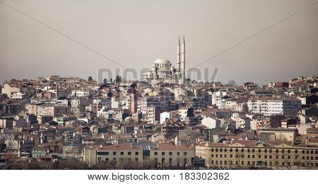 panoramic view of Istanbul with the Blue Mosque at center