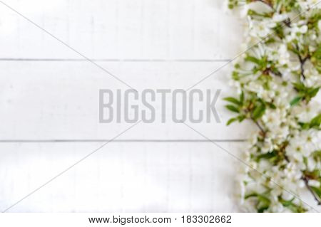 White flowers of a cherry on branches on a white wooden background. Free space for your project (note). Blurred fuzzy background.