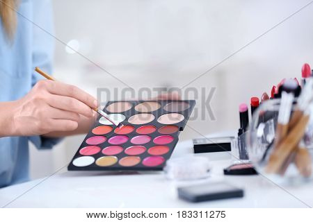 Professional makeup artist with cosmetics at beauty salon