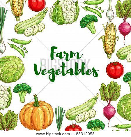 Farm vegetables sketch poster. Fresh tomato, broccoli, green onion, cabbage, corn, zucchini, pumpkin, pea, beet and cauliflower veggies for vegetarian menu, organic farm market, food packaging design