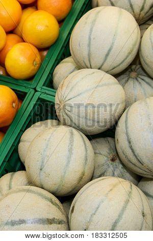 Charentais Melon and oranges. A Charentais melon is a type of cantaloupe melon.