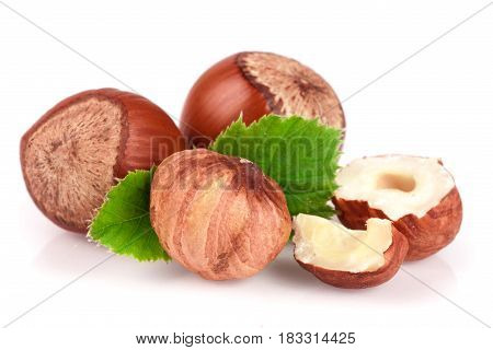 Hazelnuts with leaves isolated on white background.