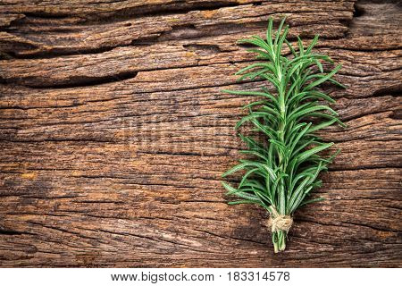The Fresh green Rosemary bound on a wooden board
