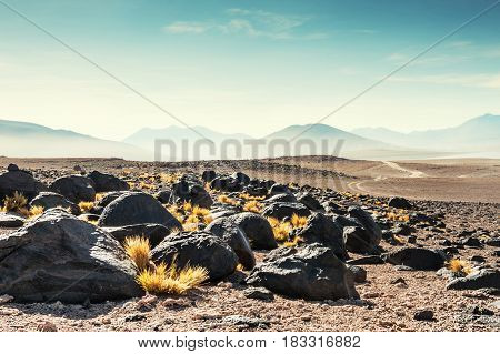 High-altitude Desert Landscapes On The Plateau Altiplano, Bolivia
