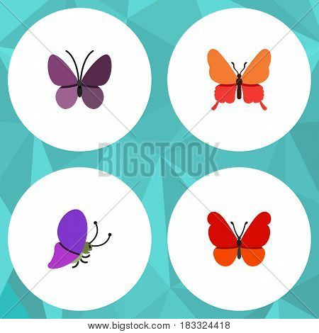 Flat Moth Set Of Monarch, Danaus Plexippus, Violet Wing And Other Vector Objects. Also Includes Butterfly, Summer, Insect Elements.