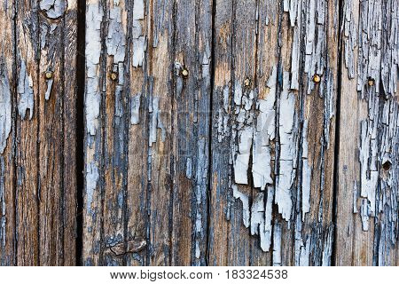 Old painted wood texture. Horizontal orientation photo