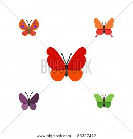 Flat Monarch Set Of Milkweed, Violet Wing, Moth And Other Vector Objects. Also Includes Insect, Moth, Butterfly Elements.