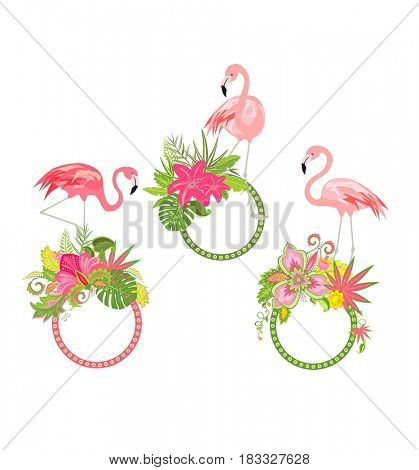 Decorative frames with tropical flowers and pink flamingo